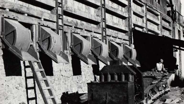 Il Tirreno: Fiori e storie di miniera a Grosseto il 16 e 17 marzo