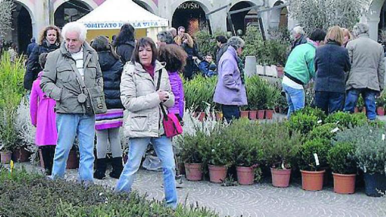 """La Nazione: Il centro di Grosseto si trasforma in giardino con la «Primavera per la vita». Domenica protagonisti """"I minatori del Giglio"""""""